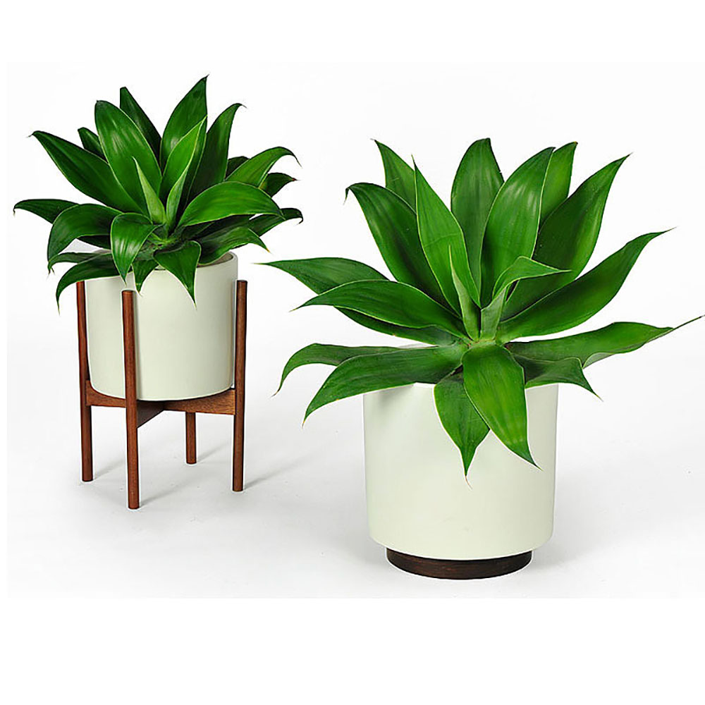 Top3 By Design Modernica Modernica Cylinder Planter