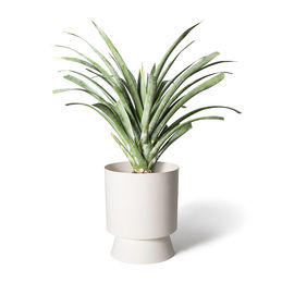 lightly palm springs planter white lig 62w w3 1000