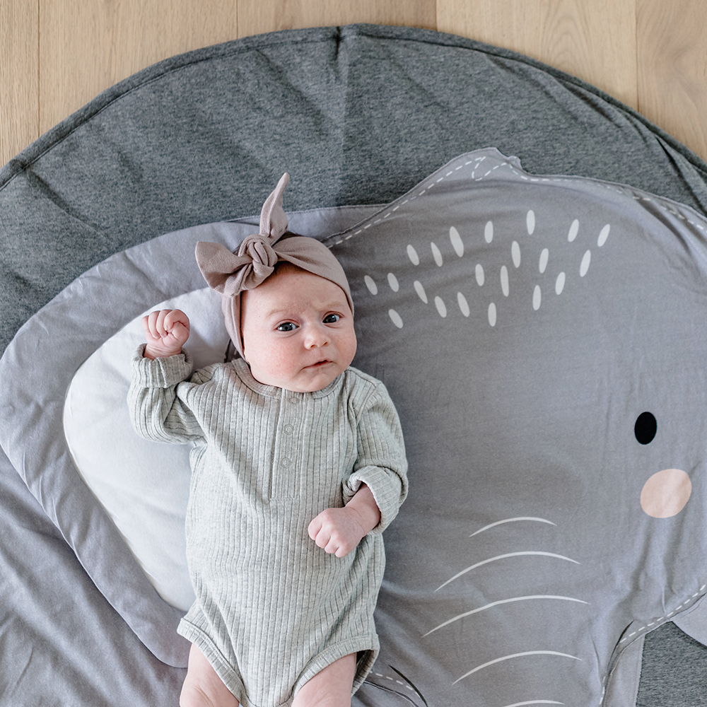 mister fly playmat elephant 03 1000