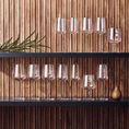 Iittala Essence Wine Glasses