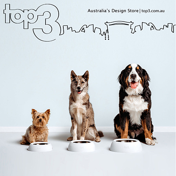 PAW-FECT DESIGN FOR YOUR PETS news from top3 by design